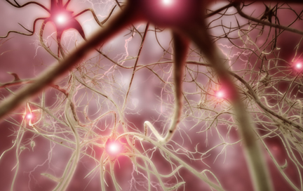 Neuro-opthalmalogy Services